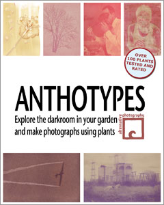 The book Anthotypes – Explore the darkroom in your garden and make photographs using plants