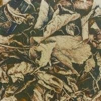 Gum-bichromate-Frozen-Leaves