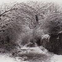 Gum-bichromate-Snowy-Lane