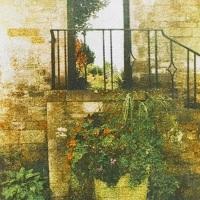 Gum-bichromate-Step-Into-The-Garden