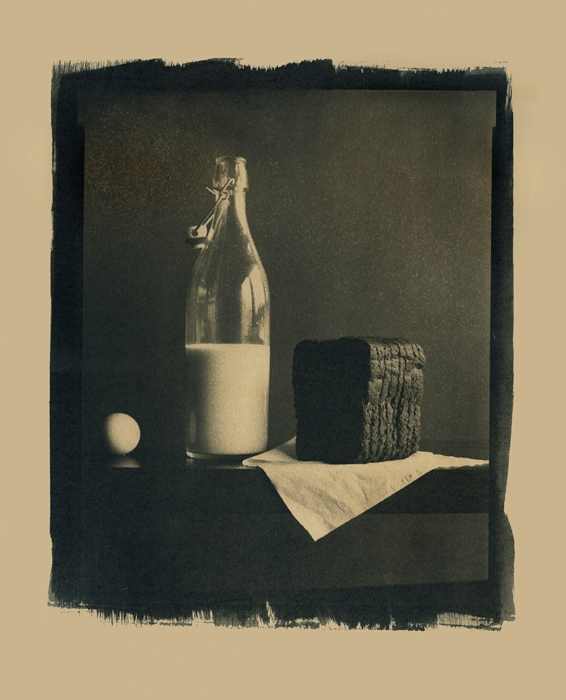 Cyanotype Still life #18 - toned with coffee