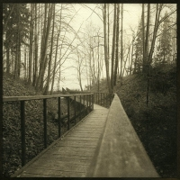 Lith print Bridge
