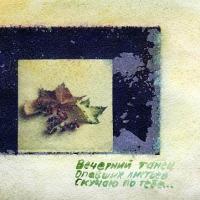 Polaroid transfer Autumn leaves
