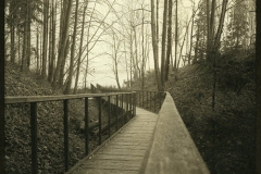 Lith print Bridge