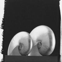 Platinum and palladium Nautilus 2