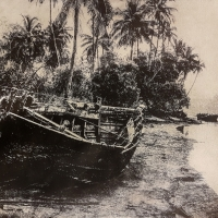 Gumoil Boats in Goa I