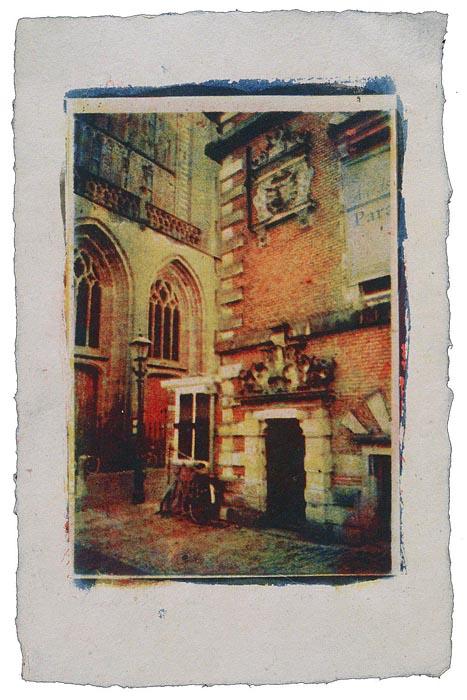 Tri color gum Haarlem