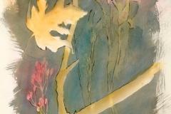 Cyanotype handcolored Fall