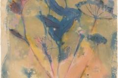 Cyanotype handcolored Summer