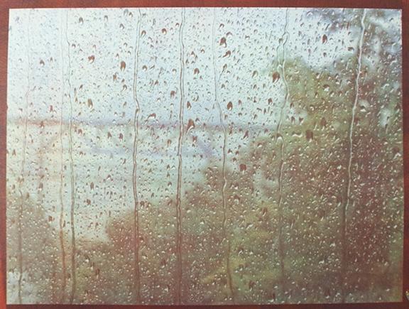 Tricolor gum Window 3