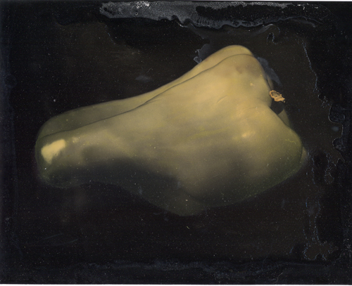 Dry plate Yellow Pepper
