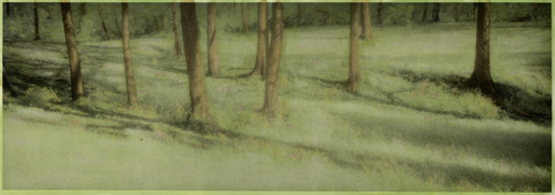 Infrared handpainted print Along the Forest Edge