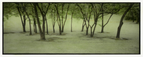 Infrared handpainted print The Grove