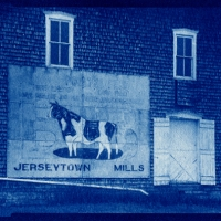 Cyanotype Jersytown Mill