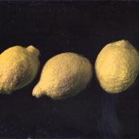 Dry plate lemmons