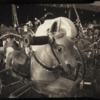 Platinum palladium pinhole Star the Bouncing Horse
