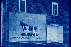 Cyanotype Jersytown Mill