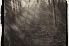 Platinum palladium pinhole Mystical Pathway