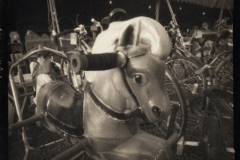Platinum palladium pinhole Star the Bouncing Horse