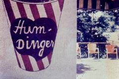 Polaroid image transfer Humdinger