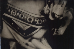 Wetplate collodion Carousel 1