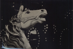 Wetplate collodion Carousel 4