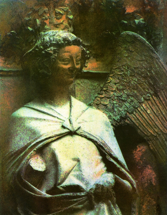 Temperaprint Angel With One Wing