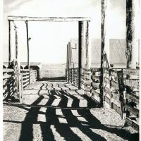 Photogravure-Corralled