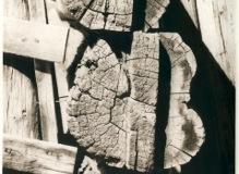 Photogravure Shifting timbers