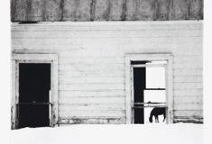 Photogravure View