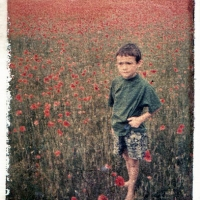 Polaroid transfer Ewan in poppy field