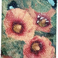 Polaroid transfer Hollyhocks