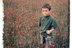 Polaroid transfer Ewan in poppy field