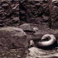 Photogravure Seal