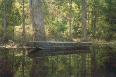 Image transfer Swamp Boat