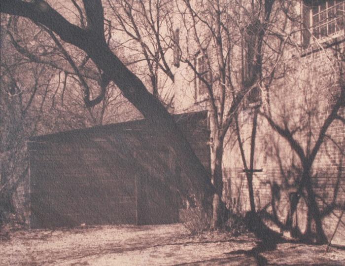 Toned Cyanotype Along the Path