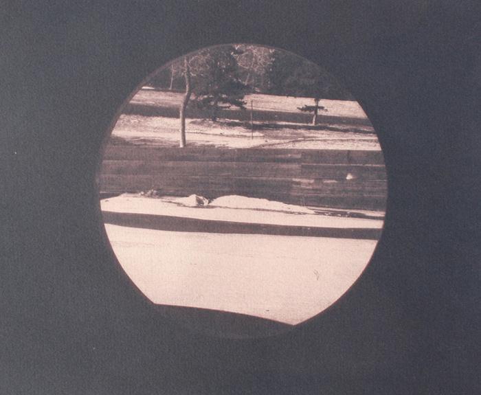 Toned Cyanotype Through the Portal