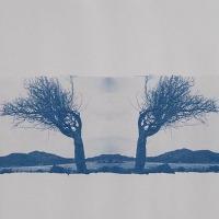 11-Cyanotype-Simetría