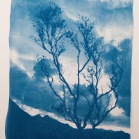 12-Cyanotype-Nubes