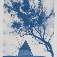 13-Cyanotype-Molino