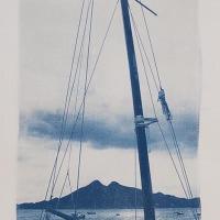 14-Cyanotype-Barco