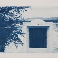 19-Cyanotype-Fernanperez