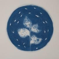 29-Cyanotype-Circulo