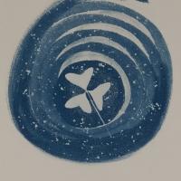 30-Cyanotype-Trebol