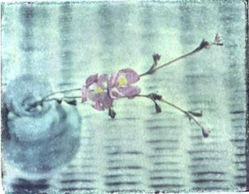 Polaroid image transfer Vase
