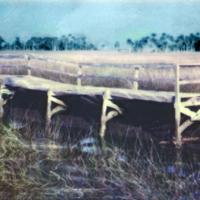 Polaroid SX-70 Gulf walk