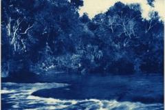 Cyanotype River