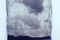Polaroid emulsion lift Gray skies