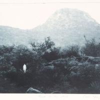 Intaglio print Yucca in the Mist
