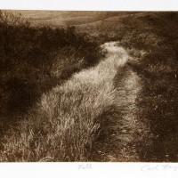 Photo-Intaglio-Path